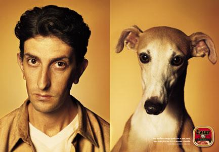 Dog lookalike 4