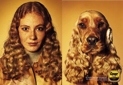 Dog lookalike 5