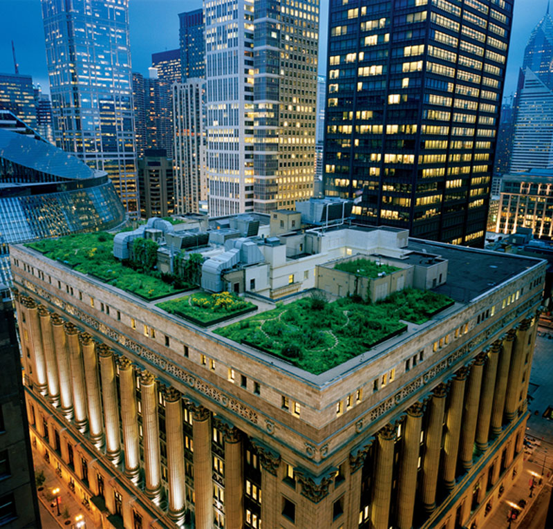 Chicago-City-Hall-Rooftop-Garden