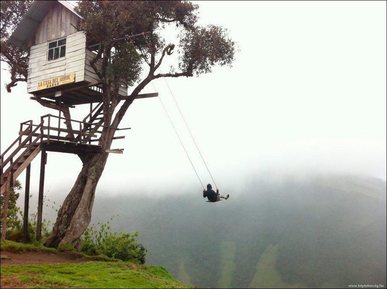 Epid-Treehouse